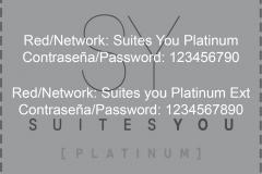 Aplicaciones_logo-platinum-2tintas-color-fondo-blanco